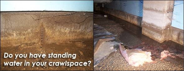 do-you-have-standing-water-in-your-crawlspace